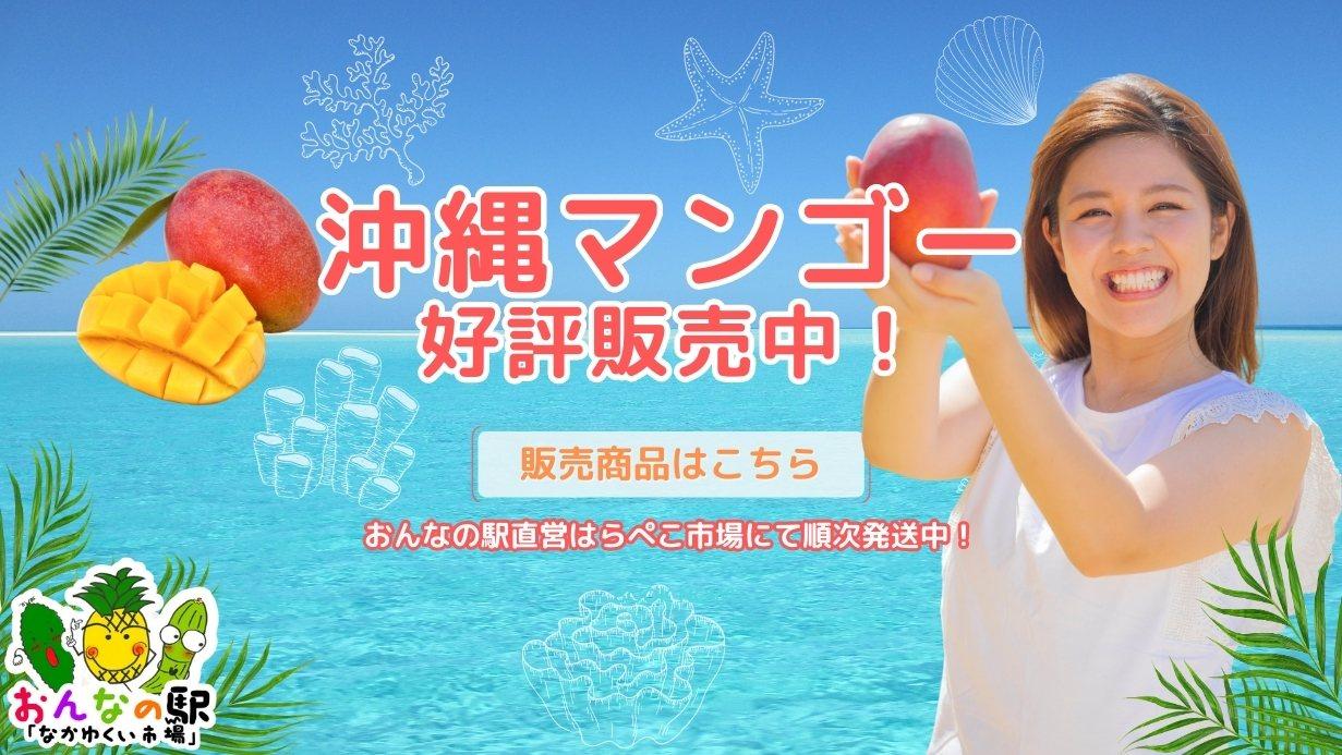 沖縄県産スナックパイン!