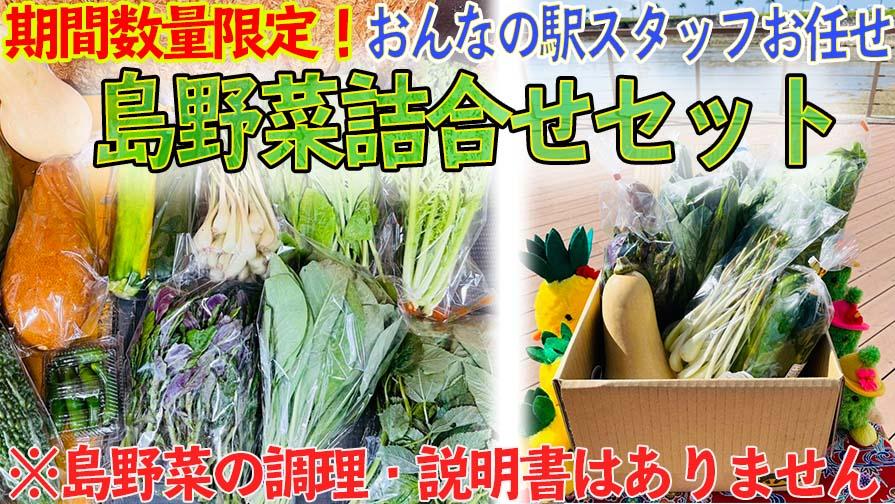 沖縄県産シークワーサー販売開始!