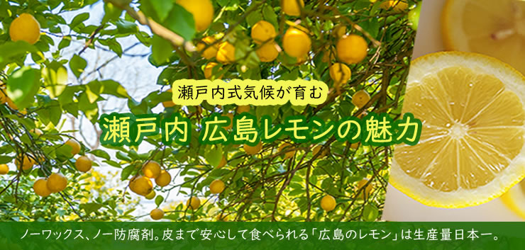 瀬戸内広島レモンの魅力