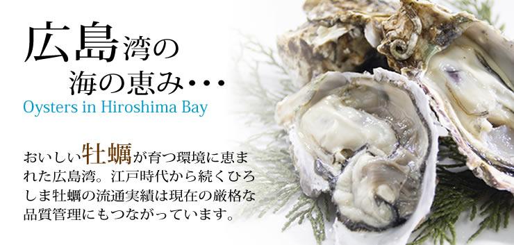 広島湾の牡蠣